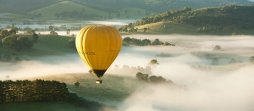 Hot air balloon, early morning over Yarra Valley vineyards